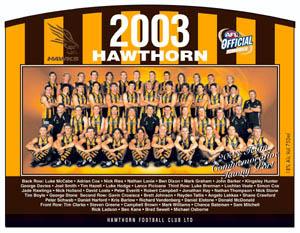 2003hawkteam.jpg